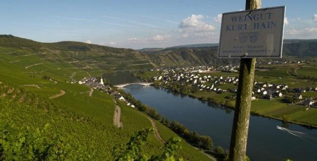 Weingut Kurt Hain – Hvidvin i verdensklasse